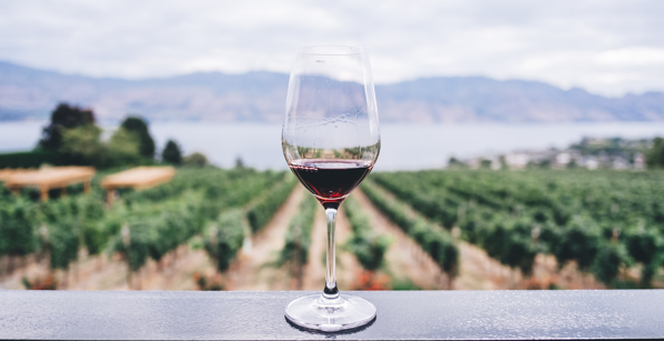 Barriers-To-Transparency-in-the-Wine-and-Spirits-Industry-and-How-To-Overcome-Them