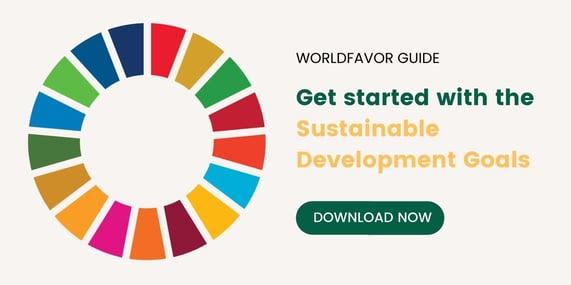 SDG CTA banner