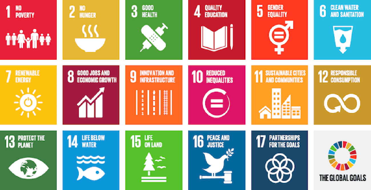 The Sustainable Development Goals: Opportunities of Aligning your Strategy and Communication